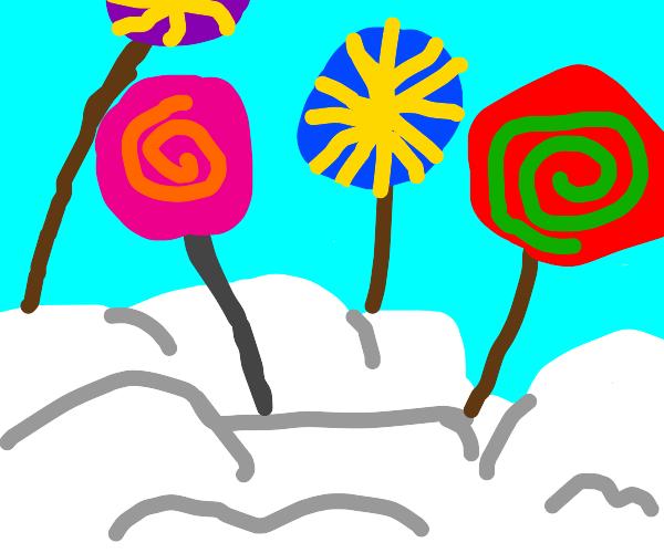 lollypop dream land