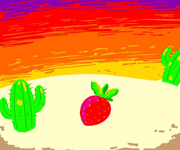strawberry in the desert