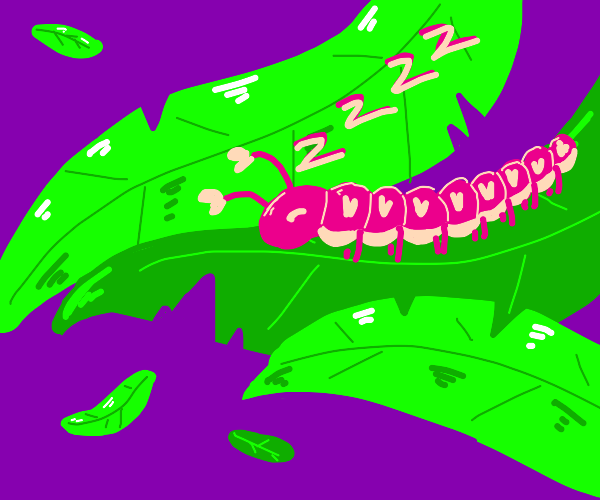 sleepy caterpillar