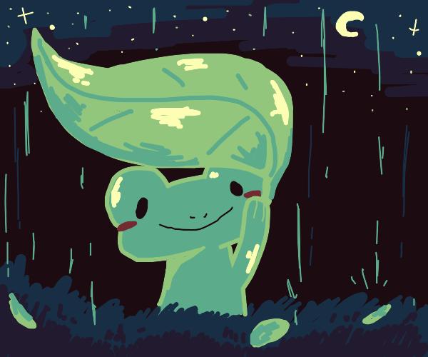 Frog under leaf