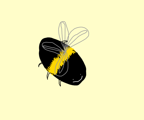 a bee with only one stripe