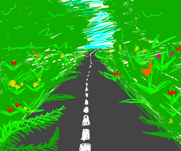 Road in between flowers