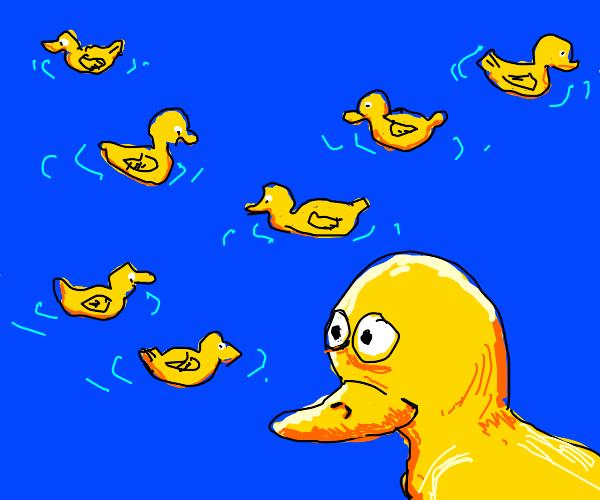 Duck duck duck duck duck duck duck and DUCK