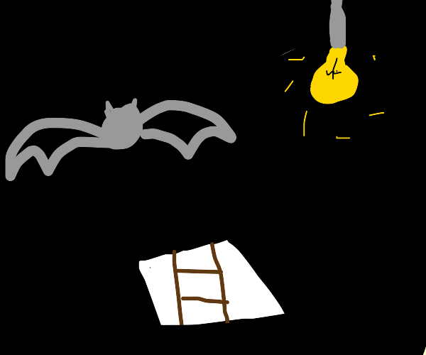 Bat from the Attic