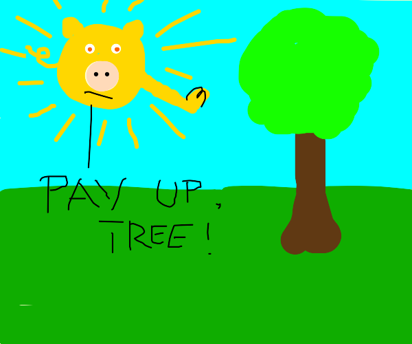Pig like sun thinks it owns money from tree