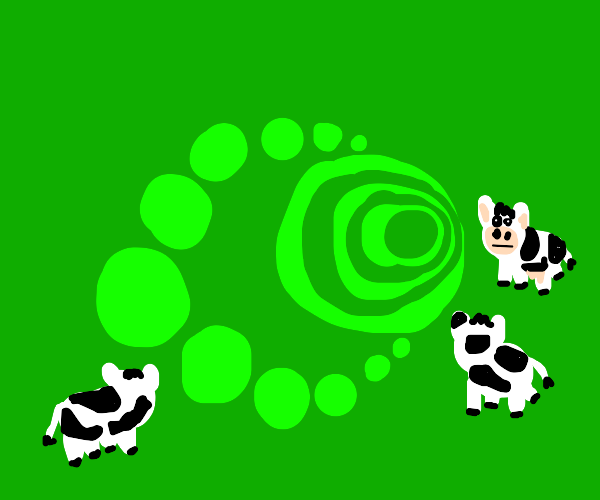 a cow cult