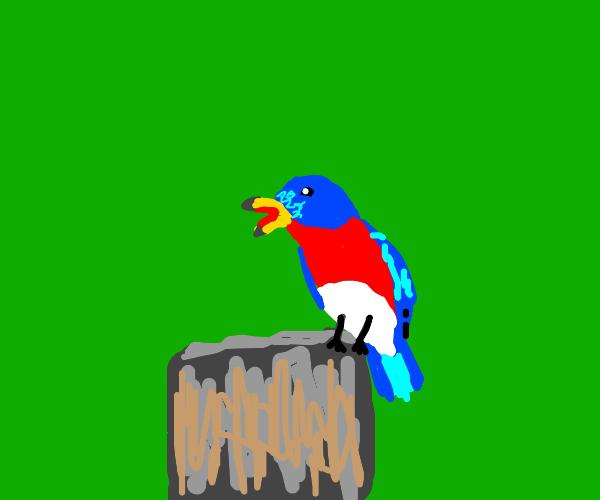 Blue bird is singing.