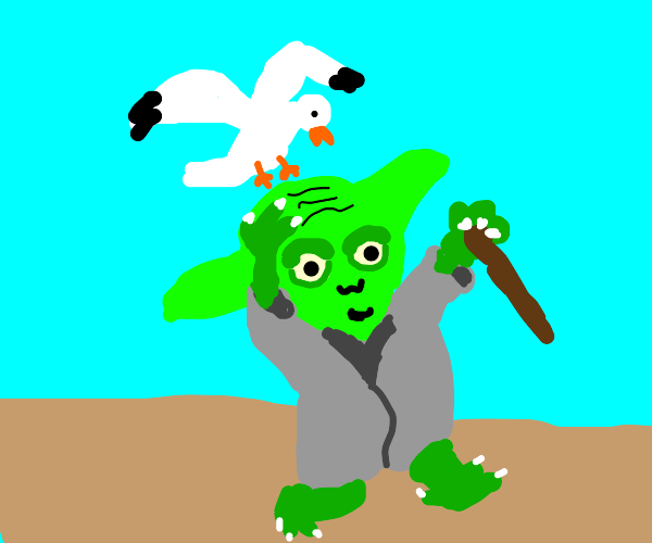 Yoda annoyed By seagulls
