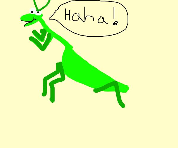 Praying Mantis Laughing