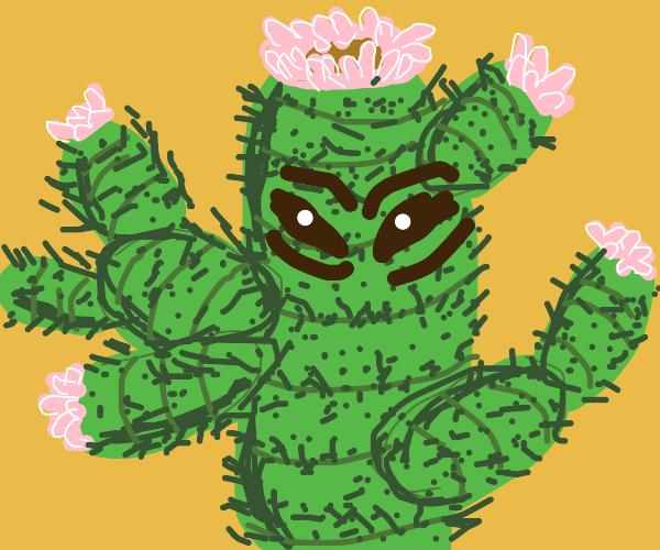 cactus bad