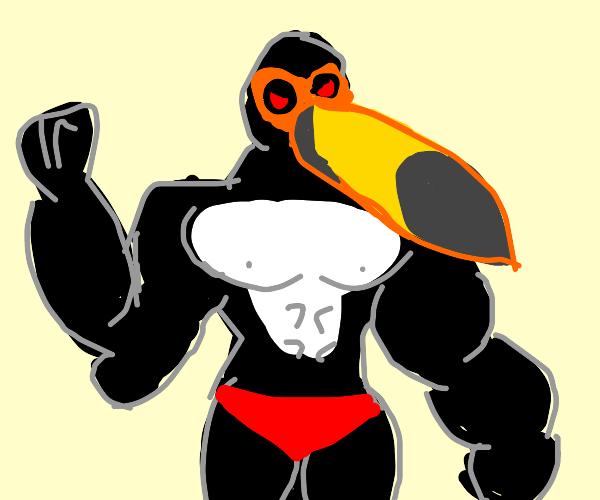 Very furious battle toucan