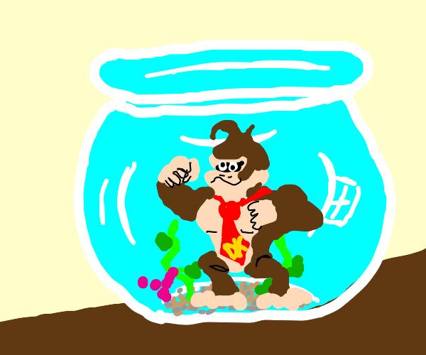 Dokey kong in a aquarium