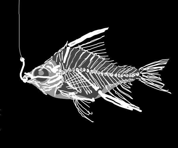 Using x-ray vision for fishing