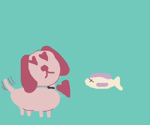 Dog Loves Dead Fish