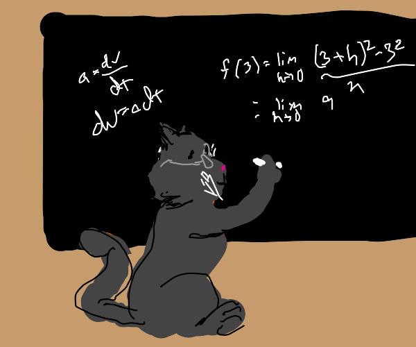 Cat Calculus, Cat-Culus!