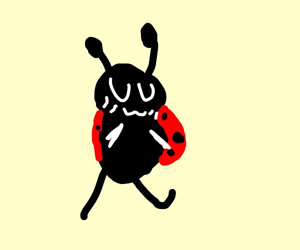 Ladybug with uwu face