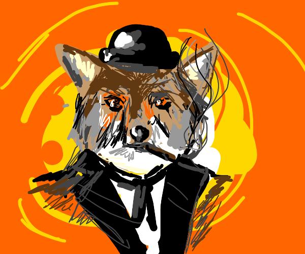 a coyote smoking