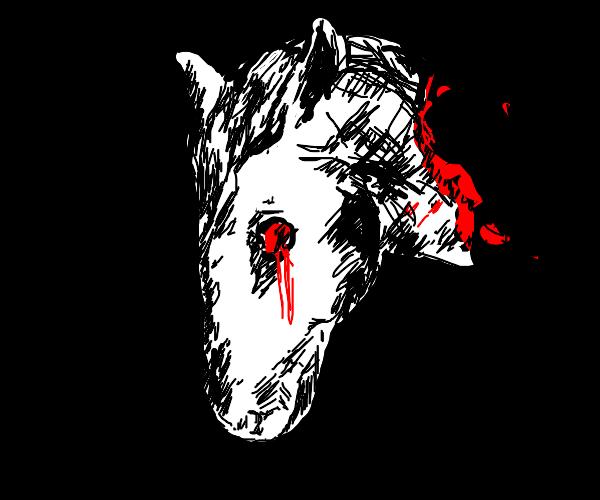 Severed horse head