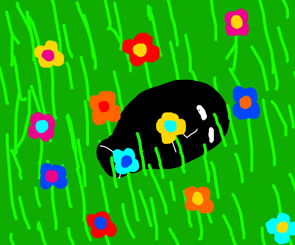 Sad black disembodied head with flowers