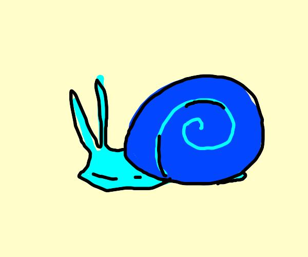 A blue snail