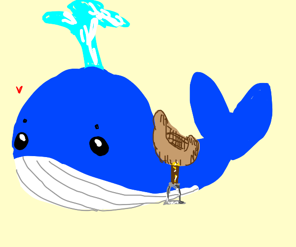 whale with an ornate saddle