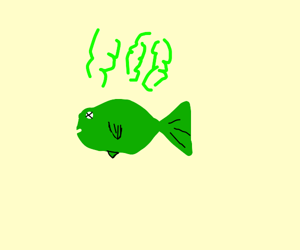 stanky fishy