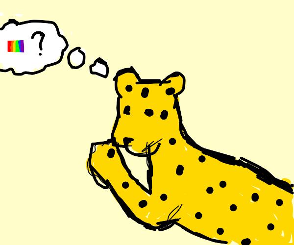 Leopard Questing
