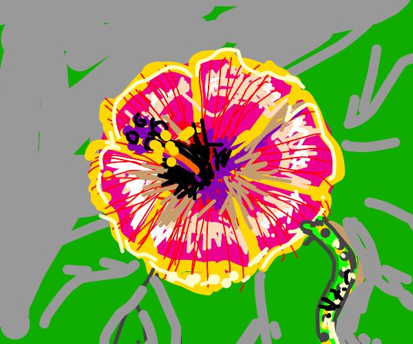 A caterpillar munch on a flower