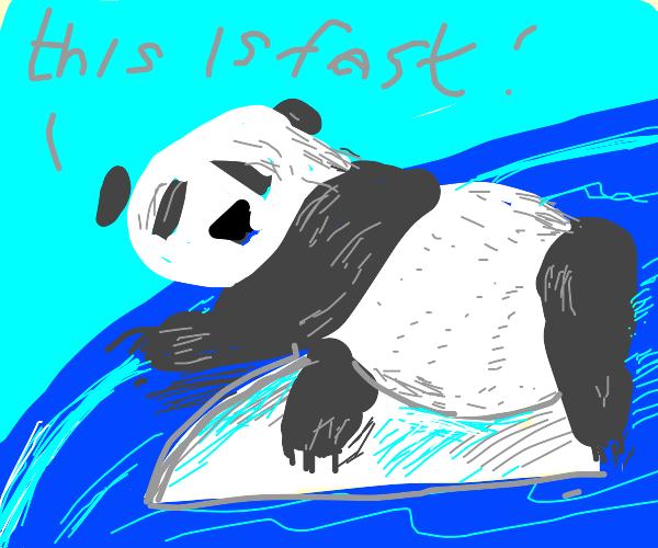 Panda On A Train