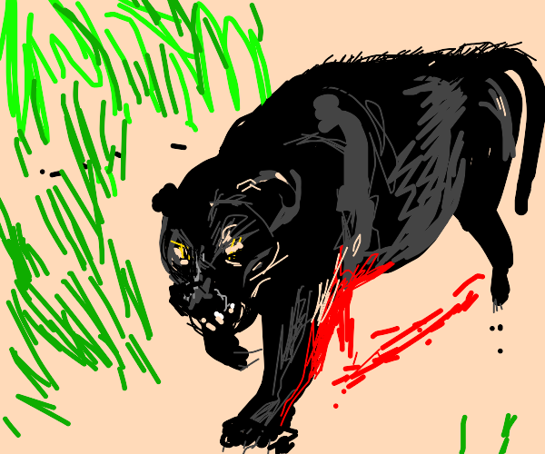 Black Panther is bleeding, but determined.