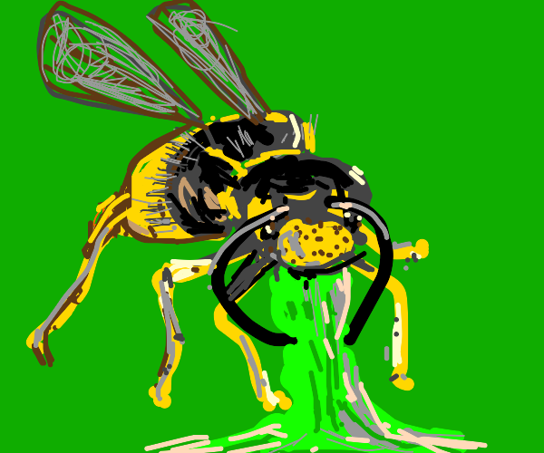 Wasp throws up green