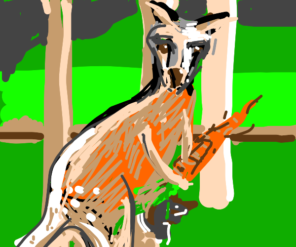 kangaroo eating a carrot