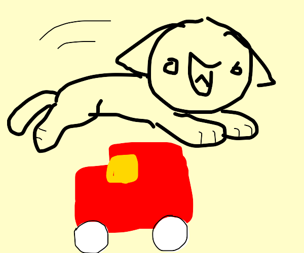 the cat that jumped over the car