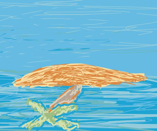 palmtree island upside down