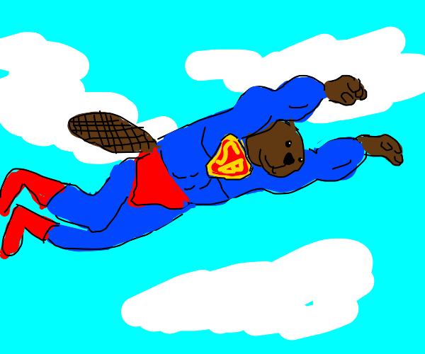 SuperBeaver takes flight!