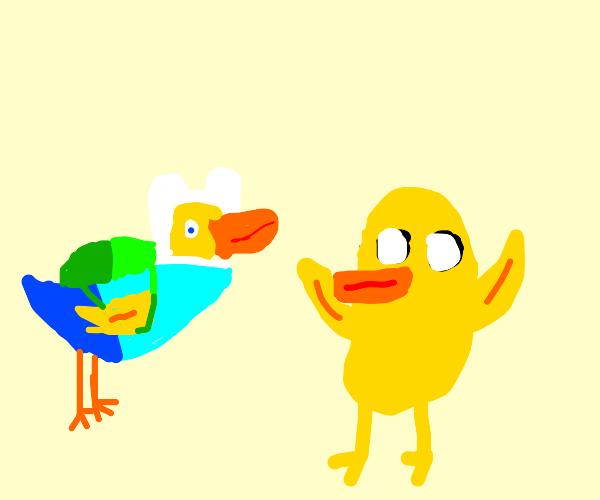 Jake the bird and Finn the... bird