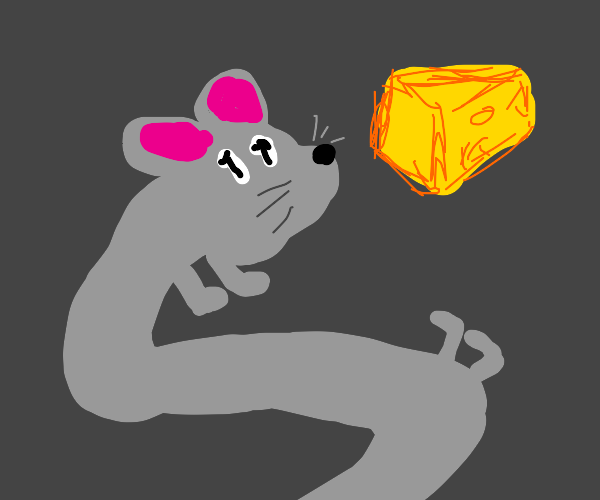 Snake game but its a rat getting cheese