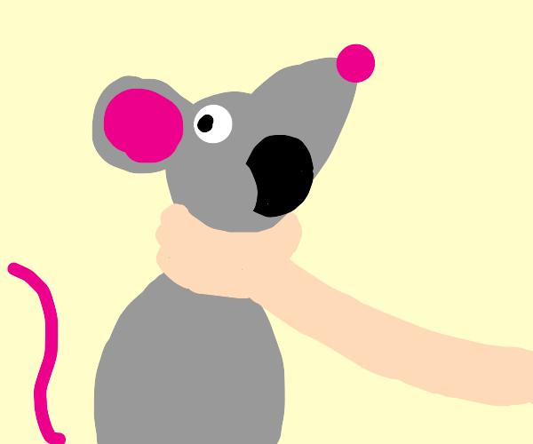 strangling a mouse