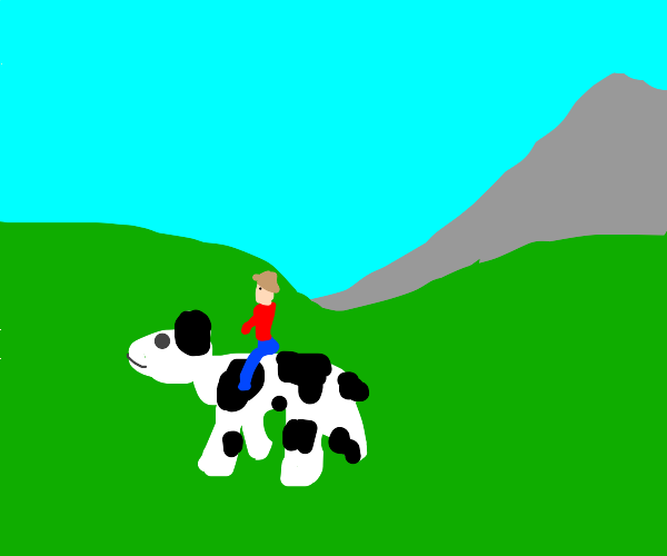Man riding cow