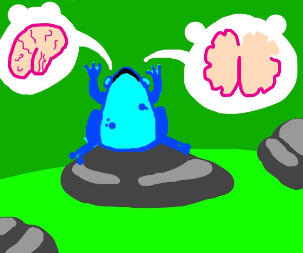 blue frog wants brains