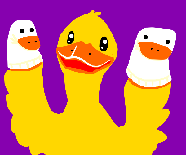 Duck puts on a sock puppet show