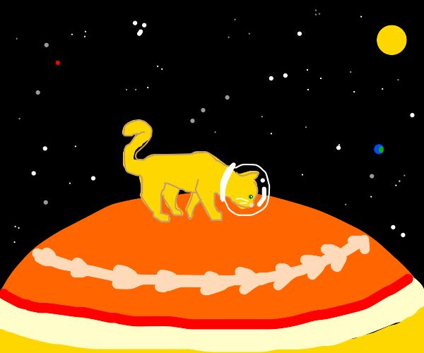 Catstronaut explores Jupiter