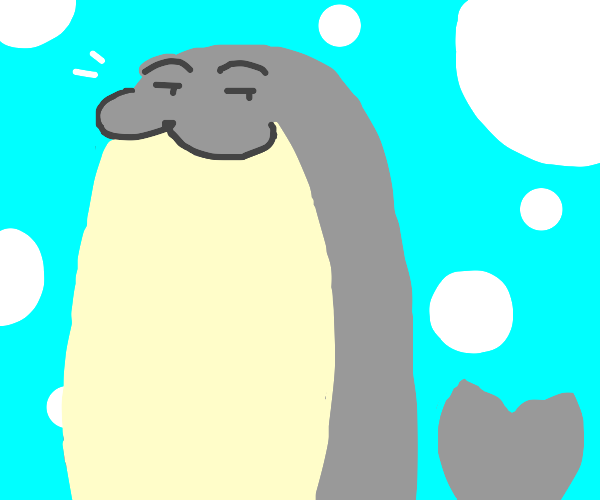 the smuggest seal