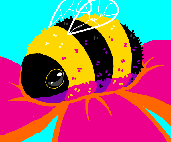 A fuzzy bumble bee :)