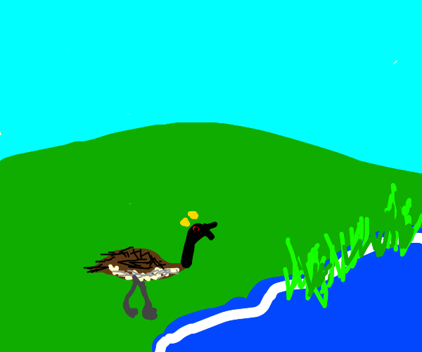 goose is angry standing next to lake