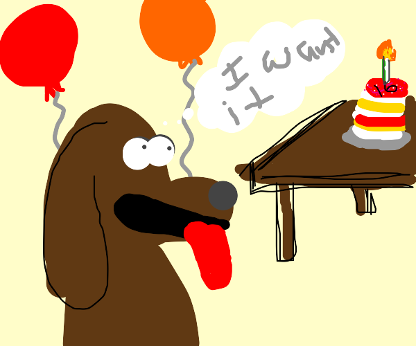 Doggo really wants birthday cake