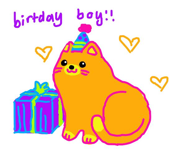 ginger cat on their birthday :)