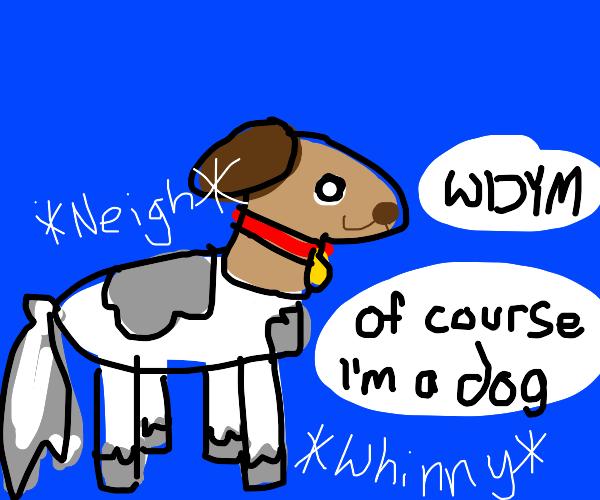 a horse masquerading as a dog