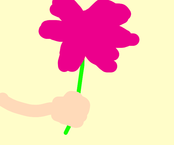 pink flower on a hand