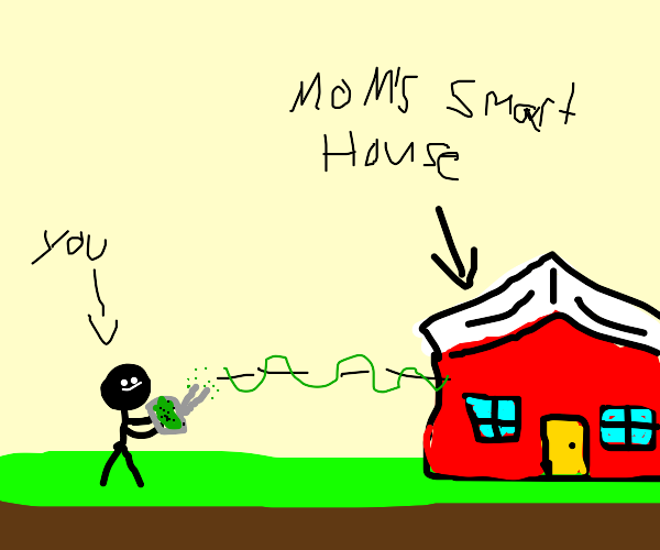 Hacking into your moms smarthouse